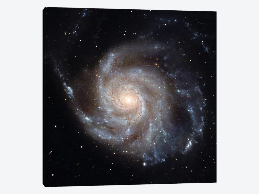 The Pinwheel Galaxy (M101) by Stocktrek Images 1-piece Canvas Wall Art