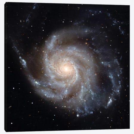 The Pinwheel Galaxy (M101) Canvas Print #TRK1735} by Stocktrek Images Art Print