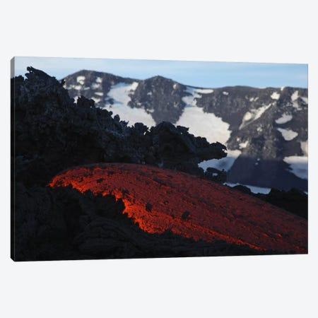 Mount Etna Lava Flow, Sicily, Italy Canvas Print #TRK1805} by Martin Rietze Art Print