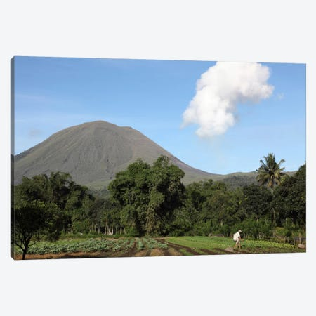 Agriculture Near Kinilow Town At Foot Of Lokon-Empung Volcano, Indonesia Canvas Print #TRK1847} by Richard Roscoe Canvas Print