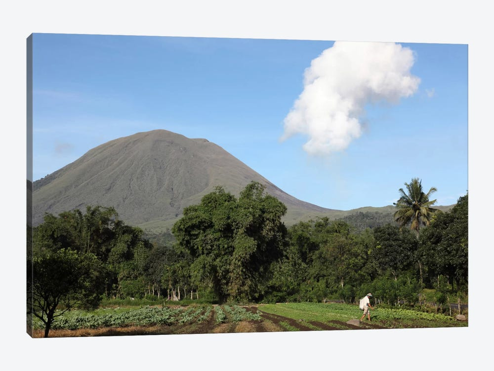 Agriculture Near Kinilow Town At Foot Of Lokon-Empung Volcano, Indonesia by Richard Roscoe 1-piece Canvas Print