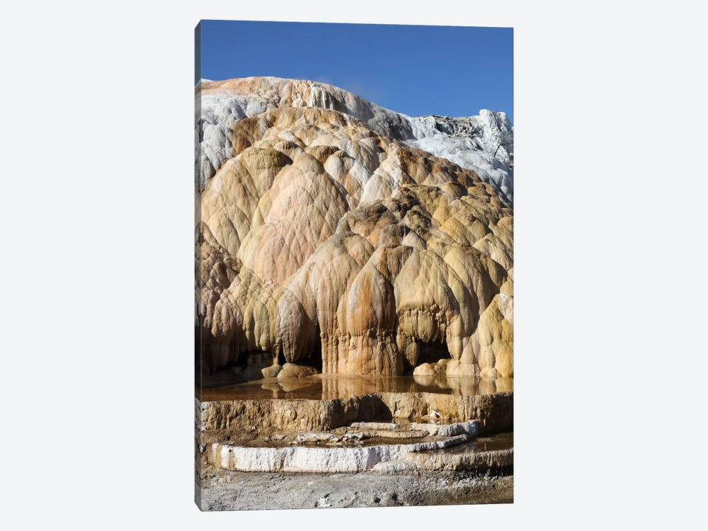 Cleopatra Terrace, Mammoth Hot Springs Geothermal Area, Yellowstone National Park, Wyoming II by Richard Roscoe 1-piece Canvas Artwork