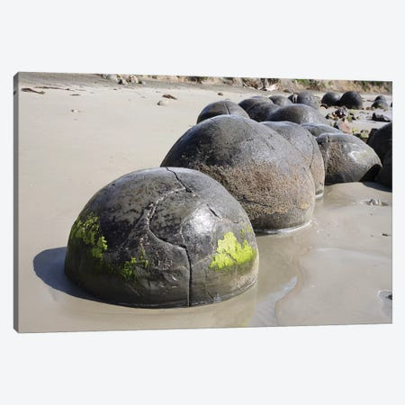 Moeraki Boulders, Koekohe Beach, New Zealand I Canvas Print #TRK1911} by Richard Roscoe Canvas Wall Art
