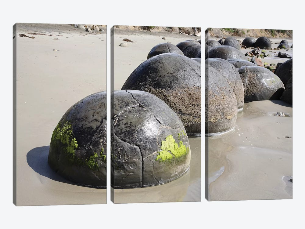 Moeraki Boulders, Koekohe Beach, New Zealand I by Richard Roscoe 3-piece Art Print