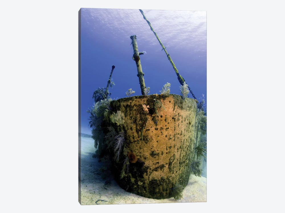 Bow Of The Oro Verde Wreck, Grand Cayman by Amanda Nicholls 1-piece Canvas Art Print