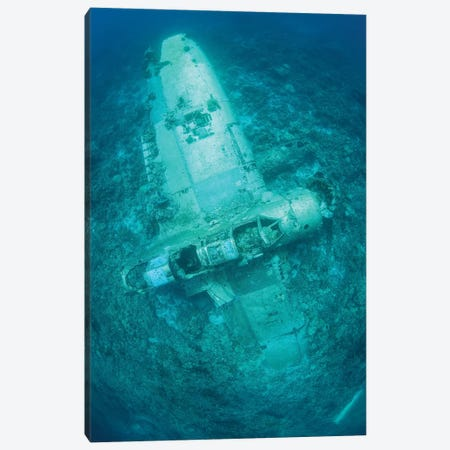 A Japanese Jake Seaplane On The Seafloor Of Palau's Lagoon Canvas Print #TRK2028} by Ethan Daniels Canvas Art