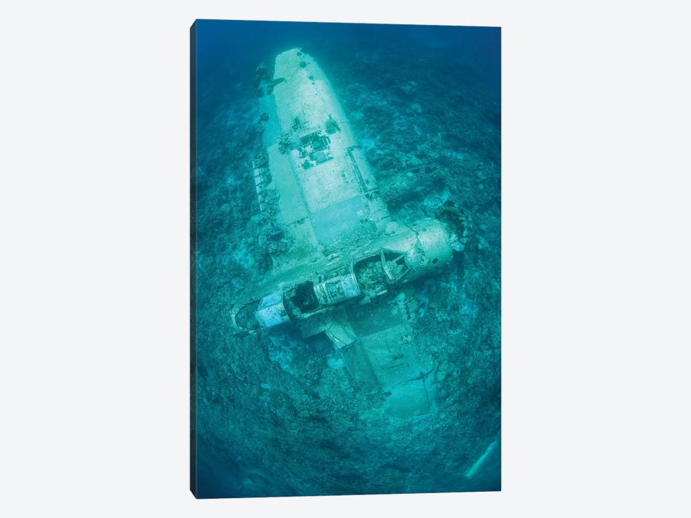 A Japanese Jake Seaplane On The Seafloor Of Palau's Lagoon by Ethan Daniels 1-piece Art Print