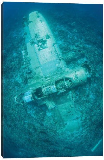 A Japanese Jake Seaplane On The Seafloor Of Palau's Lagoon Canvas Art Print