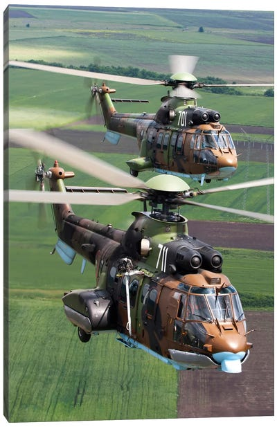 Pair Of Bulgarian Air Force Eurocopter AS532 AL Cougar Helicopters Canvas Art Print
