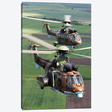 Pair Of Bulgarian Air Force Eurocopter AS532 AL Cougar Helicopters Canvas Print #TRK206} by Anton Balakchiev Canvas Wall Art