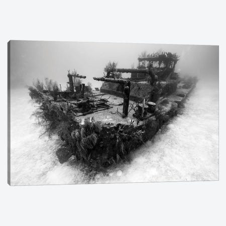 A View Of The Doc Polson Shipwreck In Grand Cayman, Cayman Islands Canvas Print #TRK2086} by Jennifer Idol Canvas Print