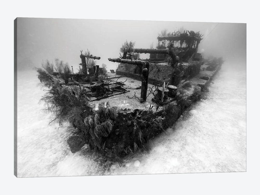 A View Of The Doc Polson Shipwreck In Grand Cayman, Cayman Islands by Jennifer Idol 1-piece Canvas Print