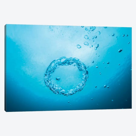 Bubble Rings In The Clear Waters Of Dutch Springs, Pennsylvania Canvas Print #TRK2087} by Jennifer Idol Art Print