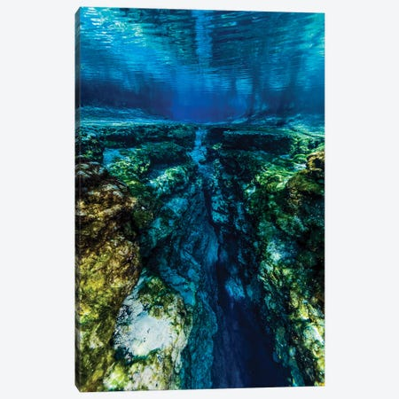 Ginnie Springs In Florida Canvas Print #TRK2089} by Jennifer Idol Canvas Art