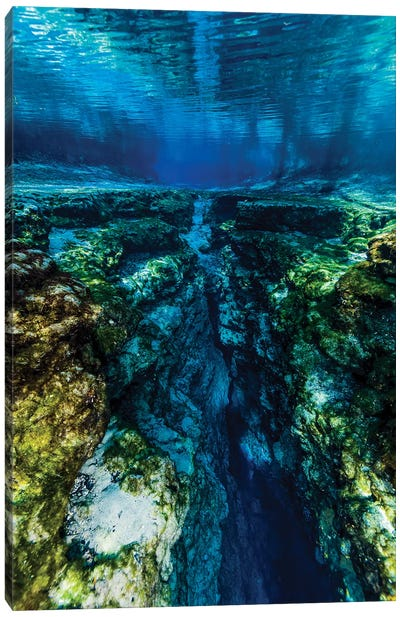 Ginnie Springs In Florida Canvas Art Print
