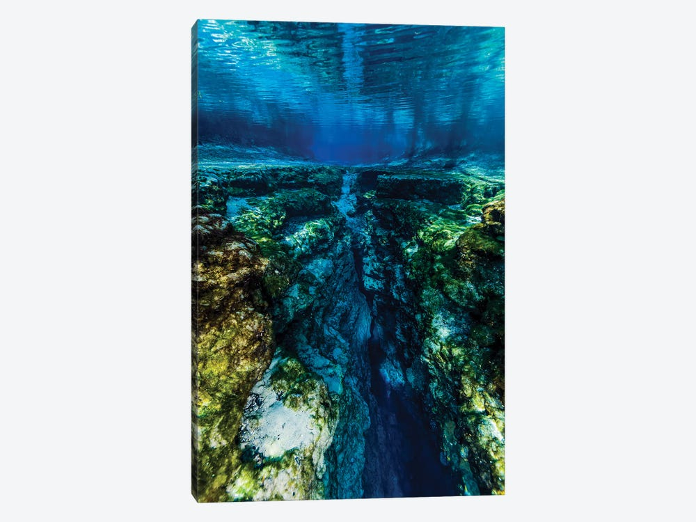 Ginnie Springs In Florida by Jennifer Idol 1-piece Canvas Art
