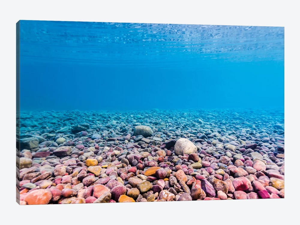 Shoreline Of Lake McDonald, Glacier National Park, Montana by Jennifer Idol 1-piece Canvas Art Print