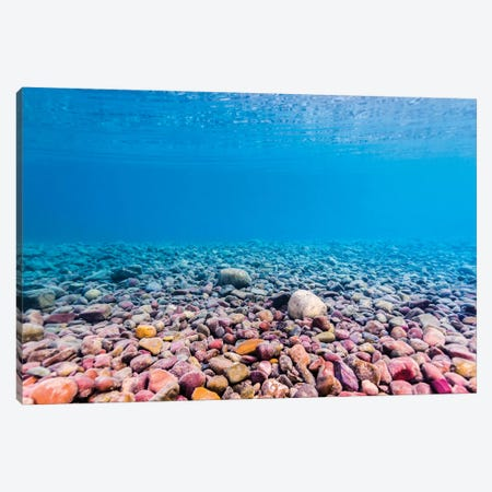 Shoreline Of Lake McDonald, Glacier National Park, Montana Canvas Print #TRK2093} by Jennifer Idol Canvas Art Print