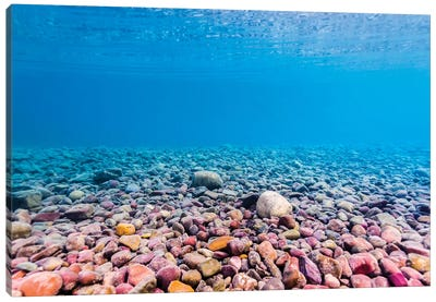 Shoreline Of Lake McDonald, Glacier National Park, Montana Canvas Art Print
