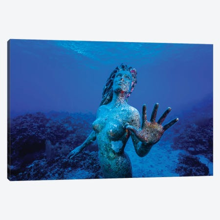 Underwater Mermaid Statue At Grand Cayman Island Canvas Print #TRK2096} by Jennifer Idol Canvas Wall Art
