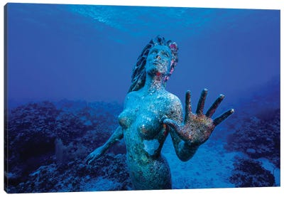 Underwater Mermaid Statue At Grand Cayman Island Canvas Art Print