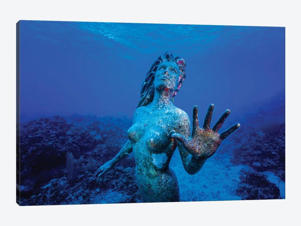 Underwater Mermaid Statue At Grand Cayman Island by Jennifer Idol 1-piece Canvas Artwork