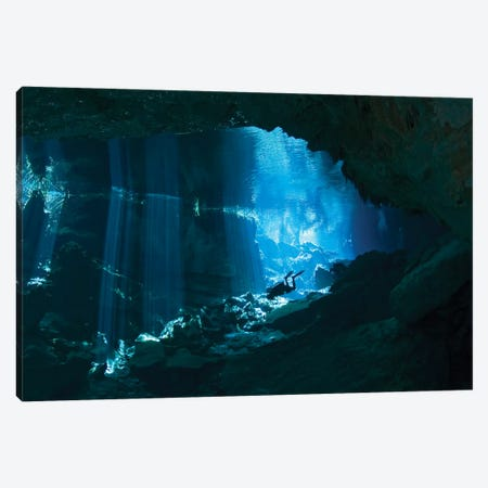 Diver Enters The Cavern System In The Riviera Maya Area Of Mexico Canvas Print #TRK2100} by Karen Doody Canvas Print
