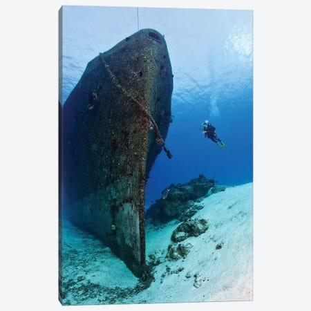 Diver Exploring The Felipe Xicotencatl Shipwreck In Cozumel, Mexico 3-Piece Canvas #TRK2101} by Karen Doody Art Print