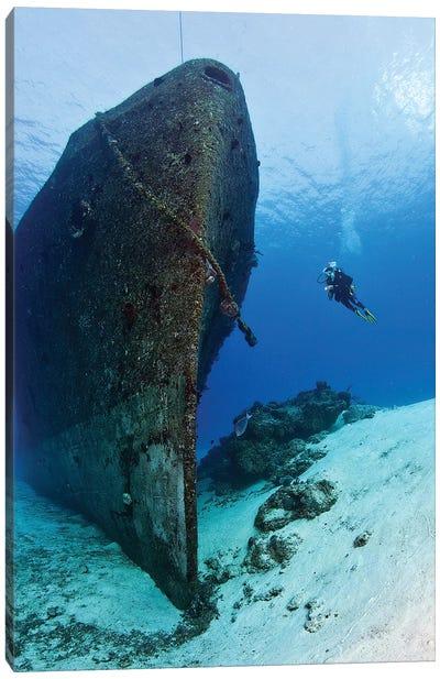 Diver Exploring The Felipe Xicotencatl Shipwreck In Cozumel, Mexico Canvas Art Print