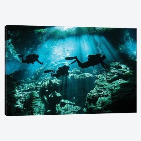 Divers Explore The Cavern System In The Riviera Maya Area Of Mexico Canvas Print #TRK2102} by Karen Doody Canvas Print