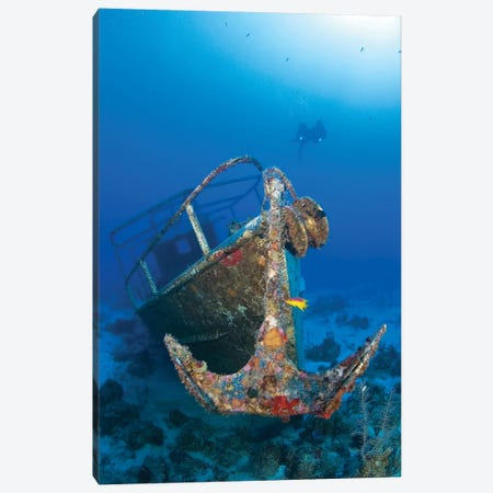 Divers Visit The Pelicano Shipwreck On The Bottom Of The Caribbean Sea 3-Piece Canvas #TRK2103} by Karen Doody Canvas Art Print