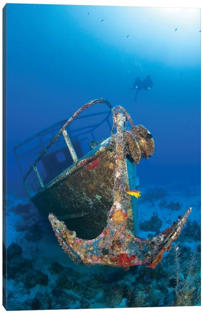 Divers Visit The Pelicano Shipwreck On The Bottom Of The Caribbean Sea Canvas Art Print