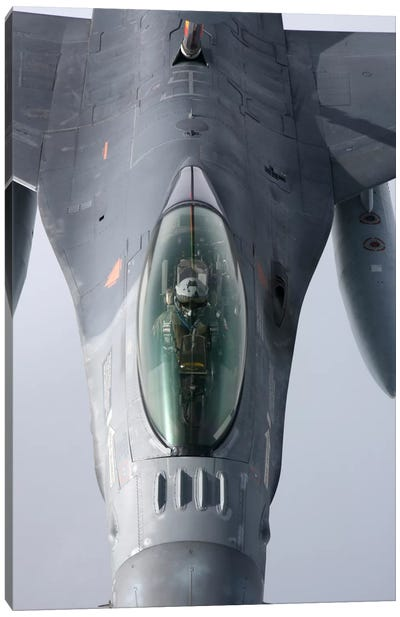 F-16 Fighting Falcon Of The Portuguese Air Force Canvas Art Print