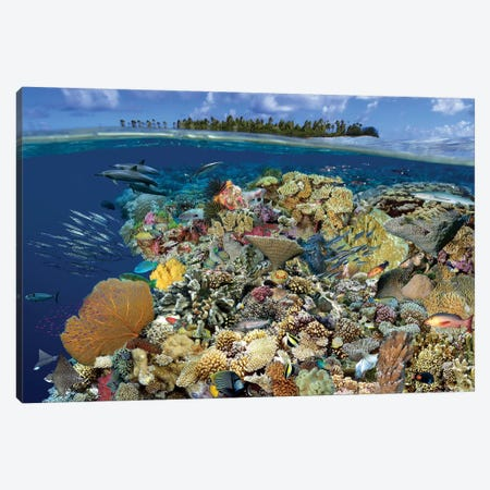 Digital Composite Of A Tropical Coral Reef Environment, Marshall Islands, Micronesia Canvas Print #TRK2175} by VWPics Canvas Art Print