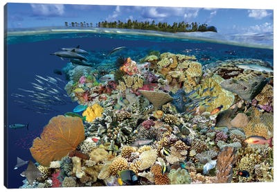 Digital Composite Of A Tropical Coral Reef Environment, Marshall Islands, Micronesia Canvas Art Print