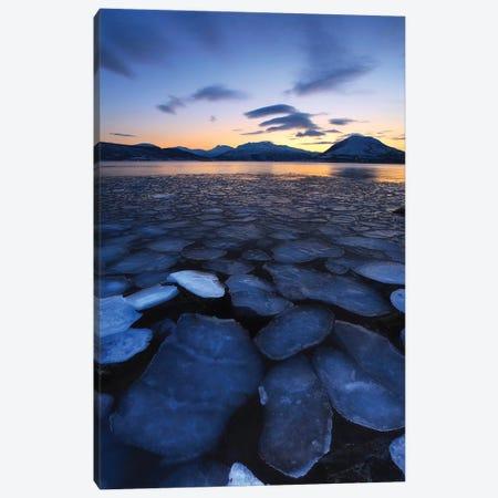 Ice Flakes Drifting Towards The Mountains On Tjeldoya Island, Norway Canvas Print #TRK2255} by Arild Heitmann Canvas Wall Art