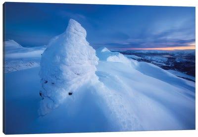 Sunset On The Summit Toviktinden Mountain, Norway Canvas Art Print
