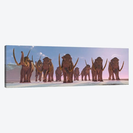 A Herd Of Columbian Mammoths Migrate To A Warmer Climate Canvas Print #TRK2282} by Corey Ford Canvas Artwork