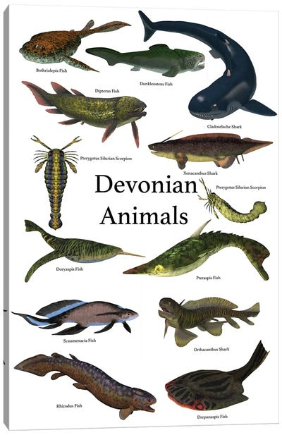 Poster Of Prehistoric Animals During The Devonian Period Canvas Art Print