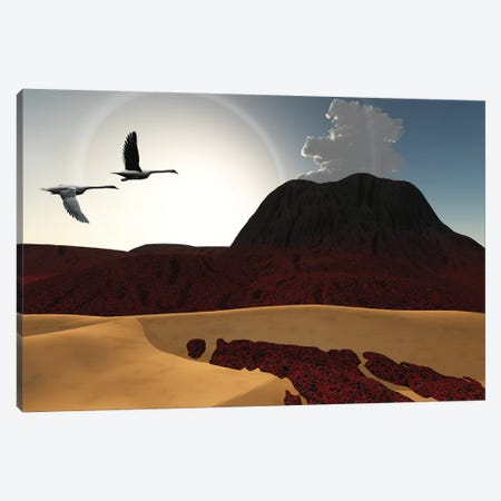 Two Swans Fly Over Cooling Lava Flows From A Recently Active Volcano Canvas Print #TRK2361} by Corey Ford Art Print