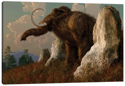 A Mammoth Standing Among Stones On A Hillside. Canvas Art Print