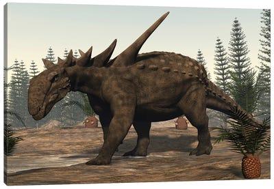 Sauropelta Dinosaur Roaming. Canvas Art Print