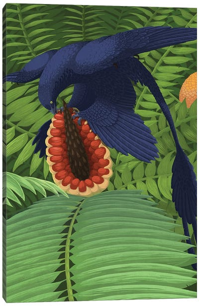 Microraptor Gui Snacking On A Cycad Fruit. Canvas Art Print