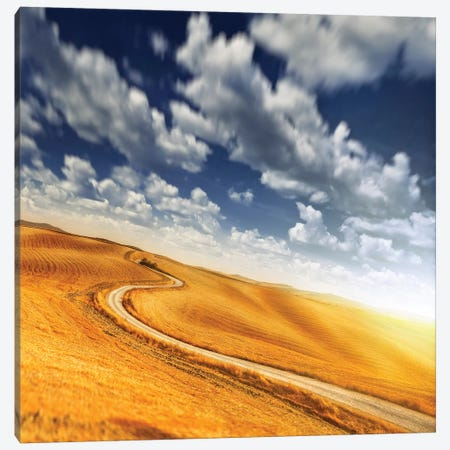 A Country Road In Field Against Moody Sky, Tuscany, Italy. Canvas Print #TRK2376} by Evgeny Kuklev Canvas Print