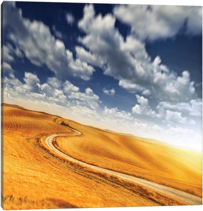 A Country Road In Field Against Moody Sky, Tuscany, Italy. Canvas Art Print