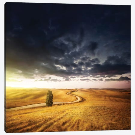 A Country Road In Field At Sunset Against Moody Sky, Tuscany, Italy. Canvas Print #TRK2378} by Evgeny Kuklev Canvas Art