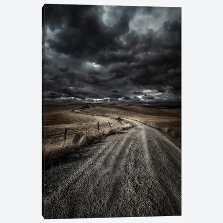 A Country Road In Field With Stormy Sky Above, Tuscany, Italy. Canvas Print #TRK2382} by Evgeny Kuklev Art Print