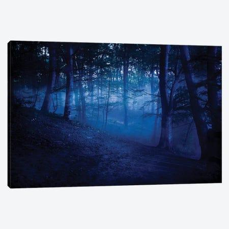 A Dark, Misty Forest, Liselund Slotspark, Denmark. Canvas Print #TRK2386} by Evgeny Kuklev Canvas Artwork