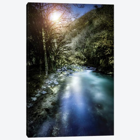 A River In A Forest At Sunset, Ritsa Nature Reserve, Abkhazia, Georgia. Canvas Print #TRK2391} by Evgeny Kuklev Canvas Artwork