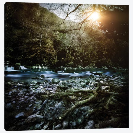 A River In A Forest At Sunset, Ritsa Nature Reserve, Abkhazia, Georgia. Canvas Print #TRK2393} by Evgeny Kuklev Canvas Wall Art